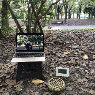 朝ヨガ Zoom オンラインレッスン 〜大阪城公園〜