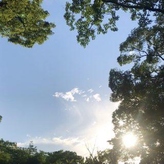 朝ヨガ Zoom オンラインレッスン 〜オンラインヨガ〜
